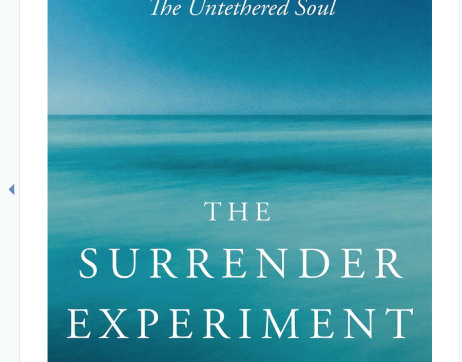 Image for The Surrender Experiment by Michael Singer