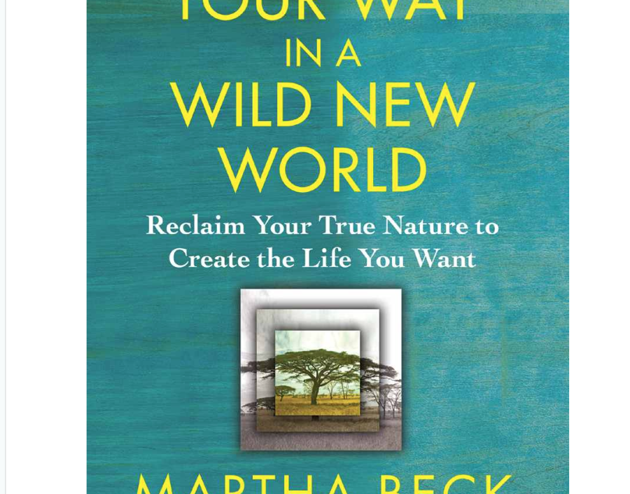Image for Finding Our Way in a Wild World by Martha Beck