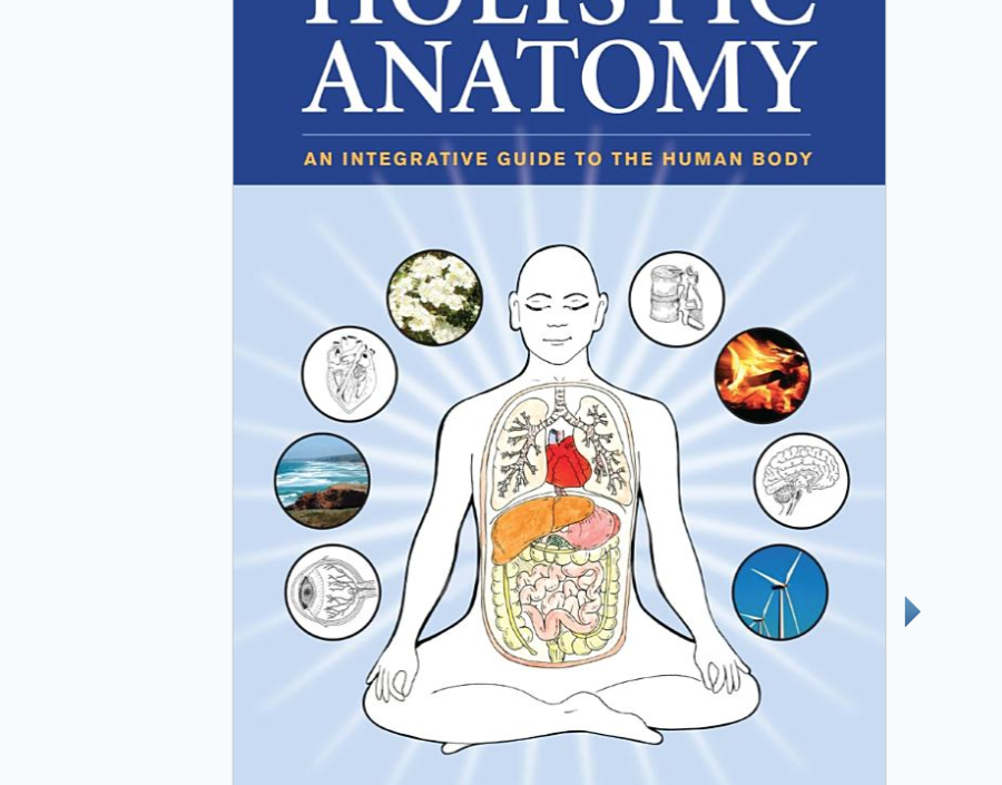 Image for Holistic Anatomy by Pip Walter