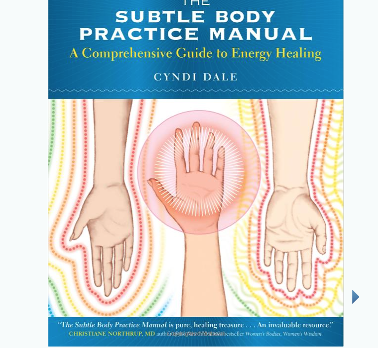 Image for Subtle Body by Cyndi Dale