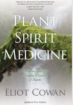 Image for Plant Spirit Medicine