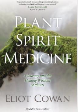 Image for Plant Spirit Medicine